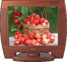 legno monitor