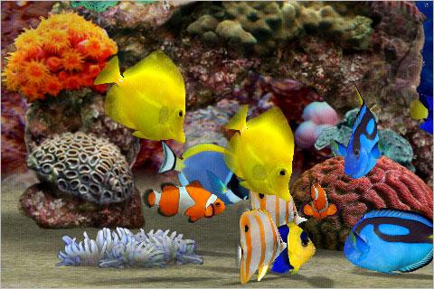 Myreef 3d aquarium un acquario tropicale tascabile su for Sfondi pesci tropicali