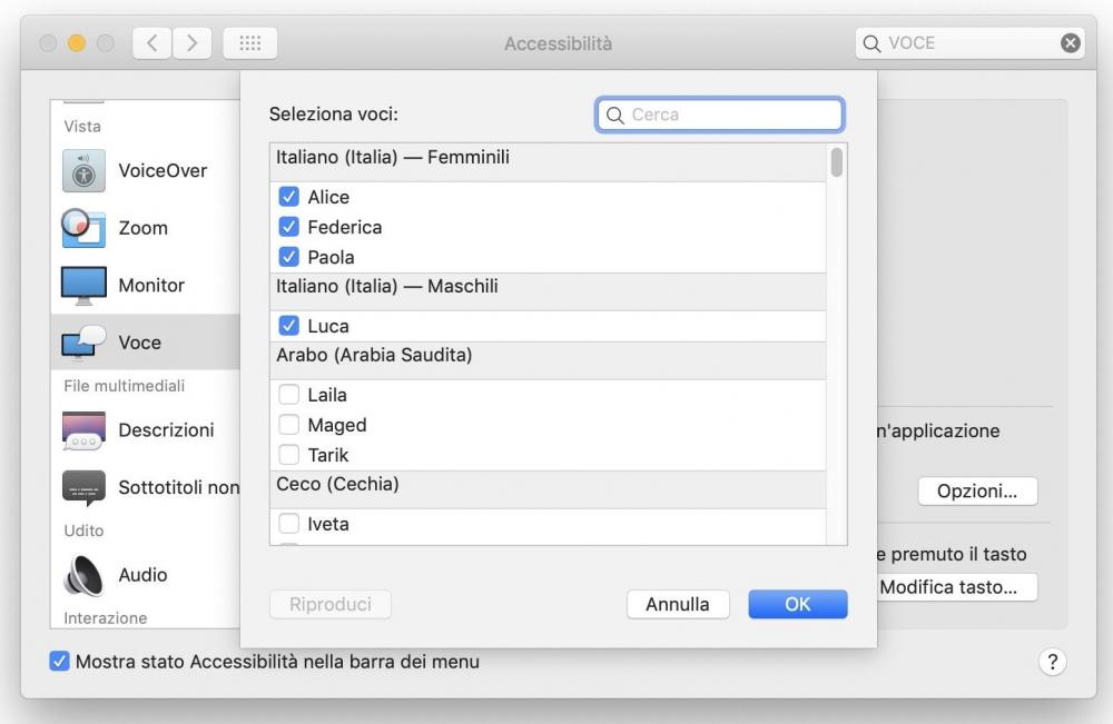 accessibilità-voce.jpg