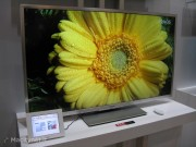 Una ultima immagine che mostra un fiore giallo, d'obbligo per mostrare la tecnologia Quattron di Sharp