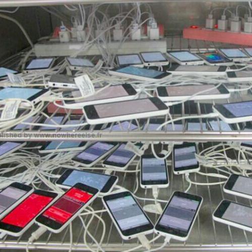 iPhone 5c, foto li mostra sulla griglia di partenza