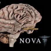 brainpro