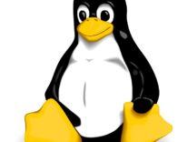 """Grave bug Linux: il tasto """"cancella"""" basta per superare la password"""