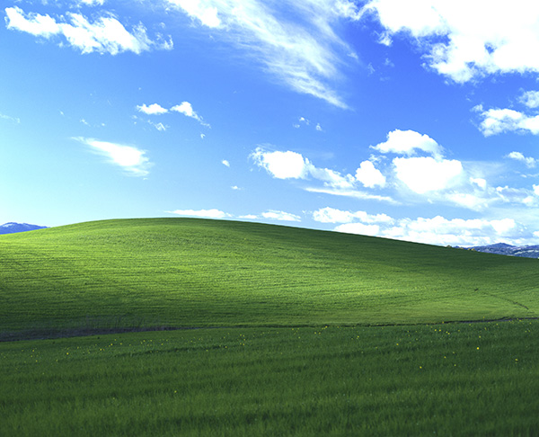 Sfondo desktop Windows XP, la storia segreta della verde collina