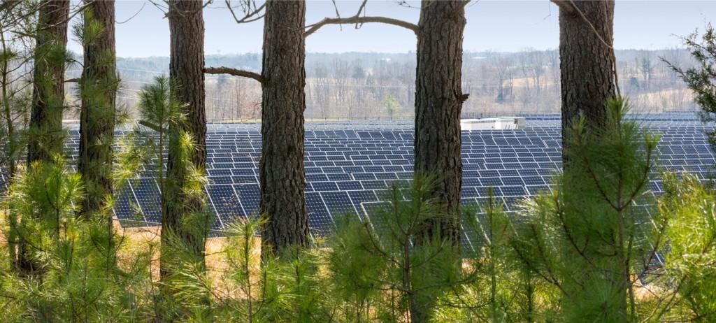 La centrale fotovoltaica Apple di Maiden, nel North Carolina (USA).