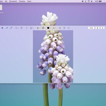 Tre trucchi per domare la cattura di schermata su Mac