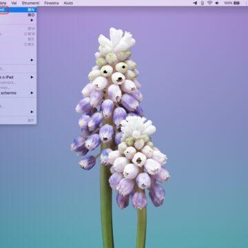 Come salvare l'immagine in HD delle icone delle app del Mac con Anteprima