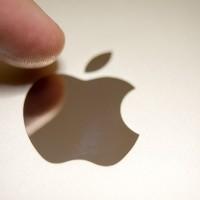 La mela lucida, su fondo metallico in color oro