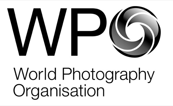 WPO_Logo exploration