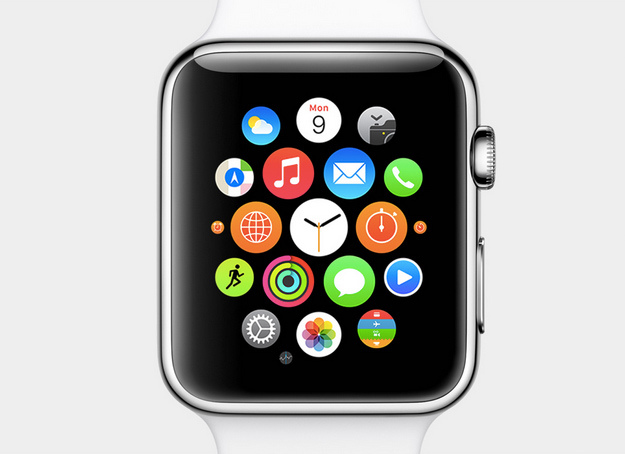 Una sola immagine per imparare ad usare Apple Watch