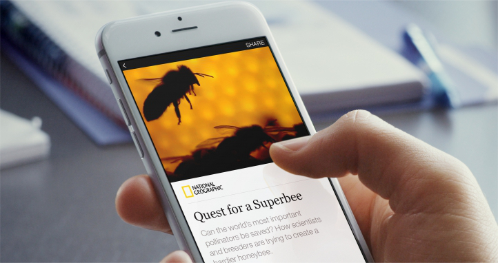 Instant Articles Facebook 0