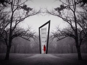 porta deformata nel bosco
