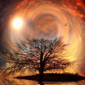cielo surreale con albero in primo piano
