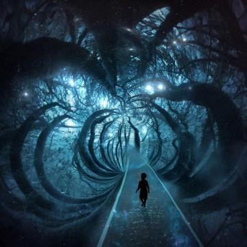 foresta surreale e buia