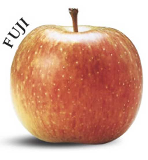 mela Fuji