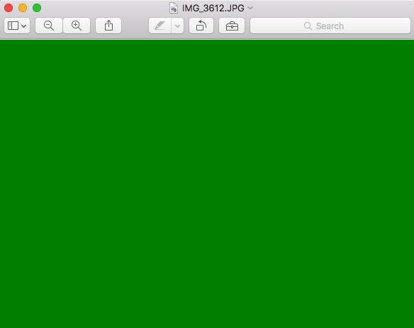 schermo verde della morte bug Anteprima JPEG El Capitan