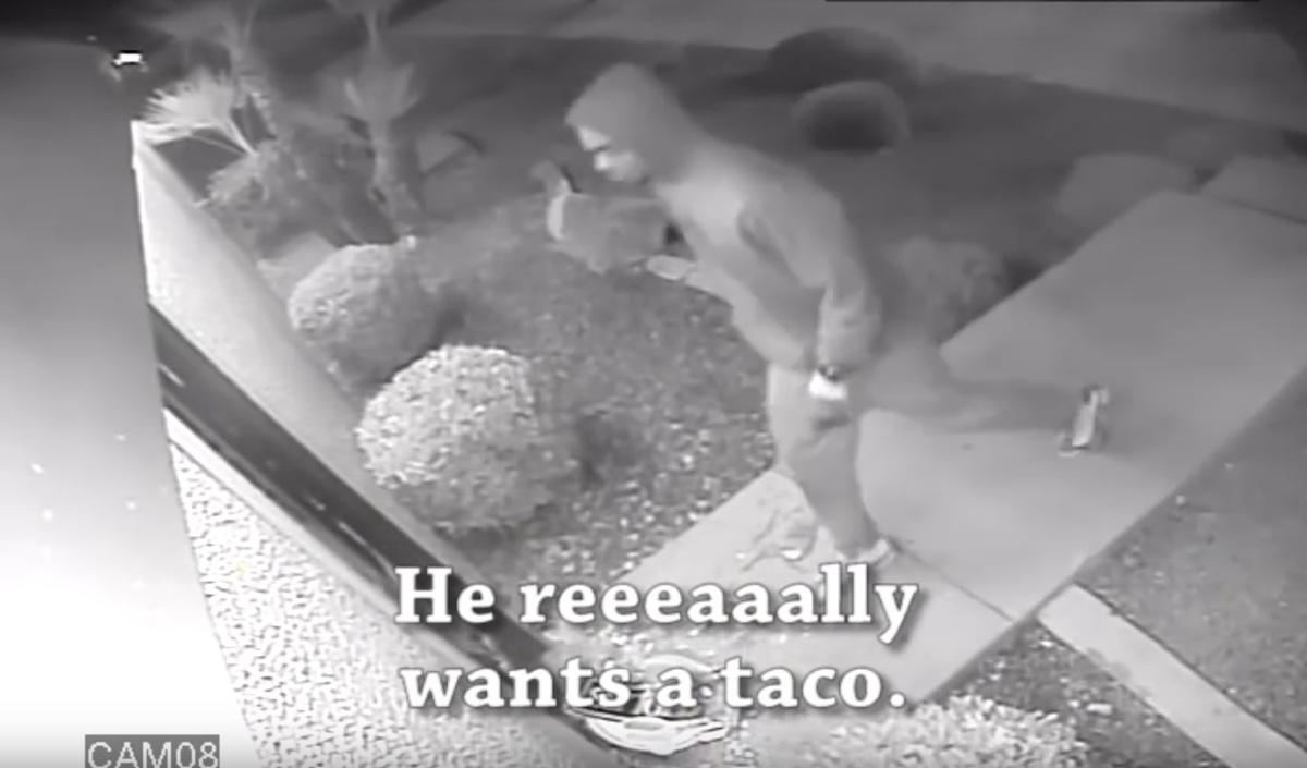 video della rapina tacos 2