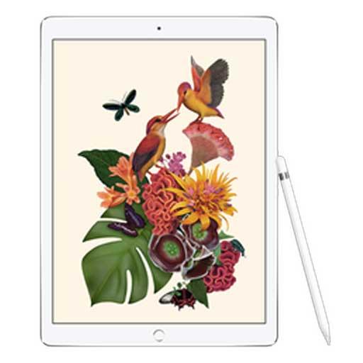 Disegno con iPad