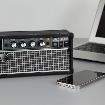 Roland JC-01 2