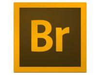 Adobe Bridge 6.2, mette il turbo e migliora la gestione di foto e asset digitali