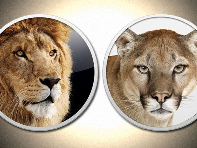 Lion e Mountain Lion