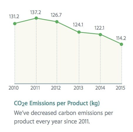 report ambientale