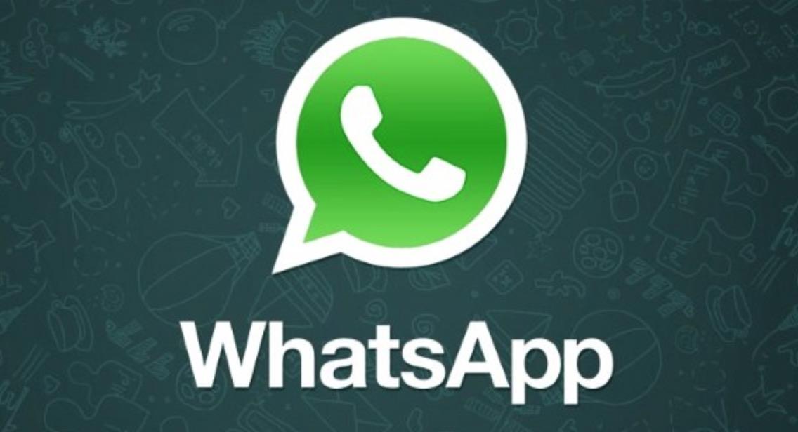 whatsapp segreteria