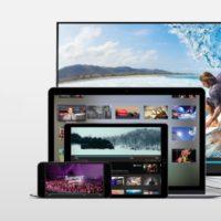 BitTorrent Live icon 800