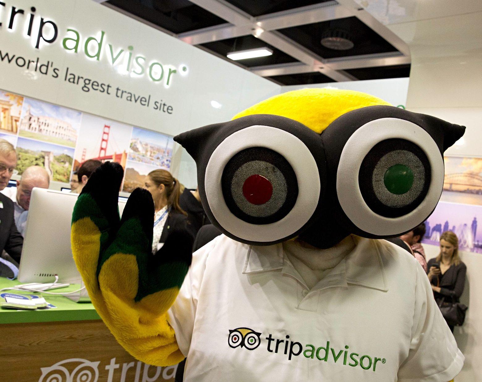 tripadvisor mascot