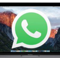 Whatsapp Web notifica