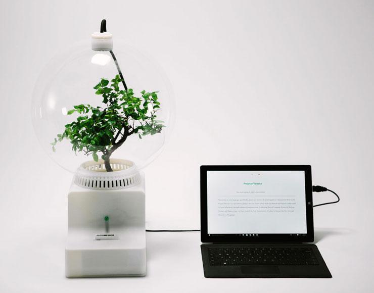 parlare con le piante Microsoft Research