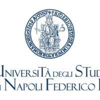 ios developer academy Federico II logo 700