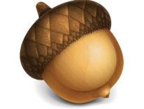 Acorn 6, aggiornato il software di disegno e fotoritocco per macOS