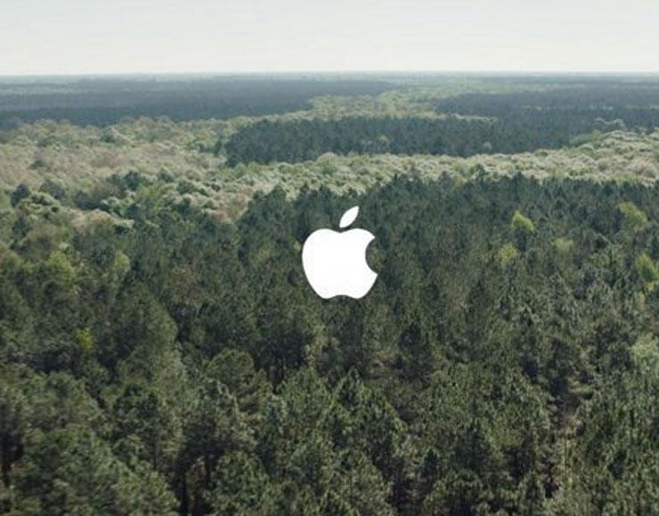 Apple ambiente