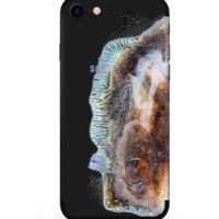 explo-sung-skin-iphone-galaxy-note-7-icon