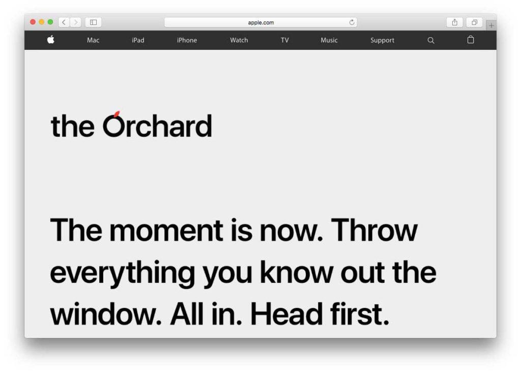 Orchard apple marketing ricerche di lavoro