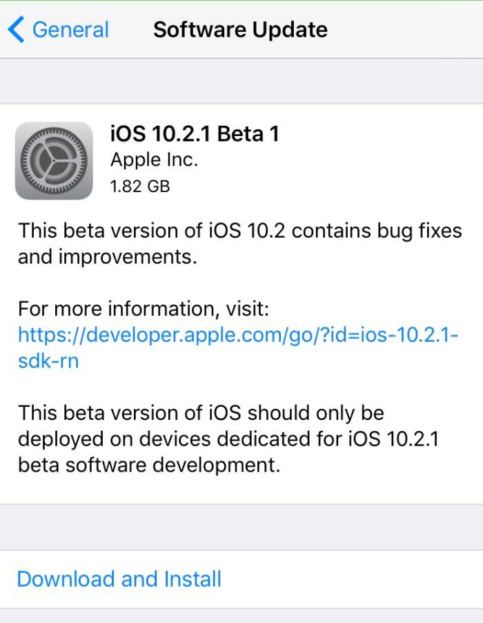 beta11021jp