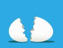 Twitter abbandona le uova: l'icona di profilo cambia dopo 7 anni