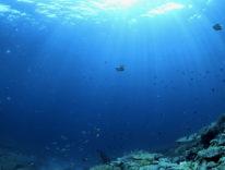 Seabed 2030 progetto per la mappatura completa degli oceani del mondo
