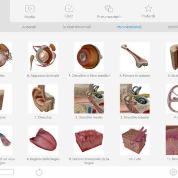 atlante anatomia ios mac 5