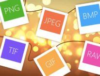 Google sperimenta Pik, un nuovo formato per le immagini Internet