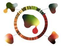 Adobe reinventa il selettore colore per le applicazioni di grafica