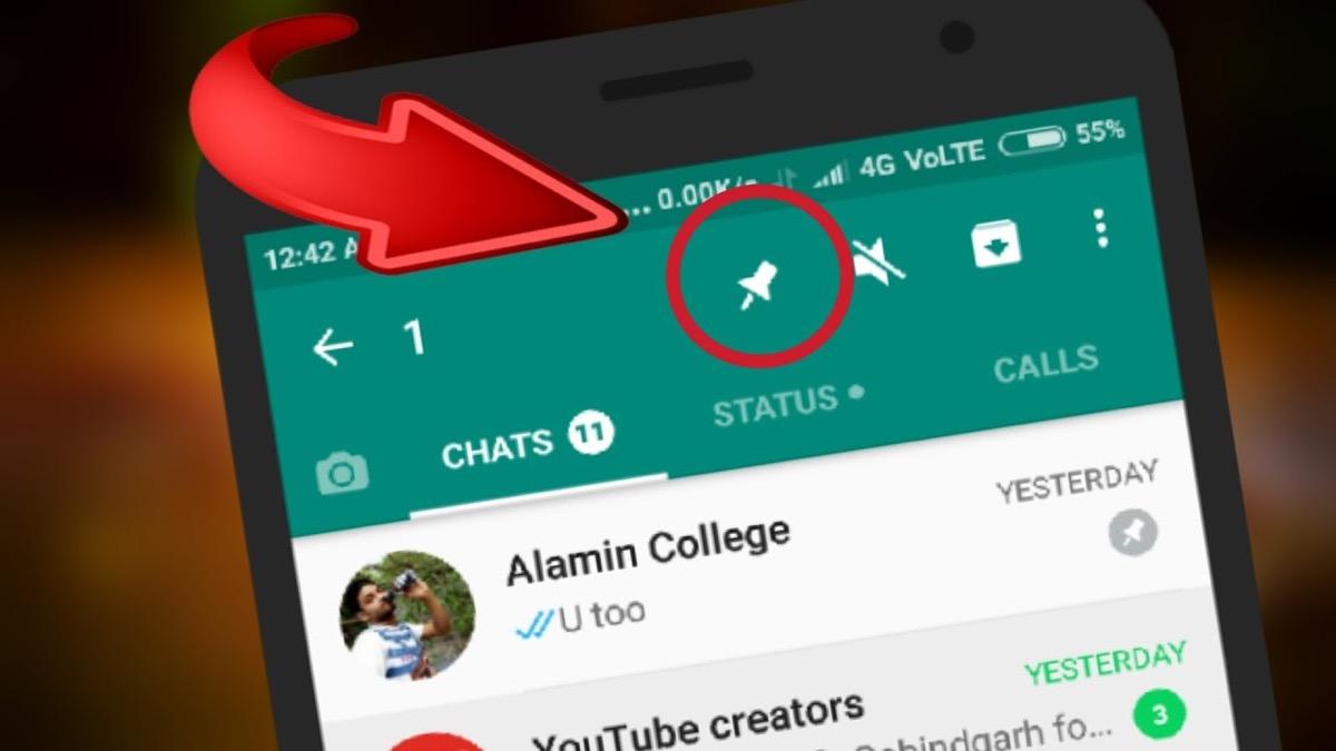 whatsapp chat pin