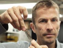 IBM e Sony registrano 330 TB nel palmo della mano
