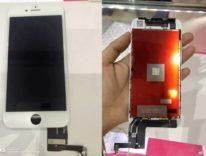 In foto il presunto schermo iPhone 7s completo, fronte e retro