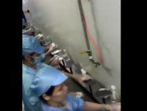 Sembra la fabbrica di iPhone 8, in due mini video un dietro le quinte misterioso