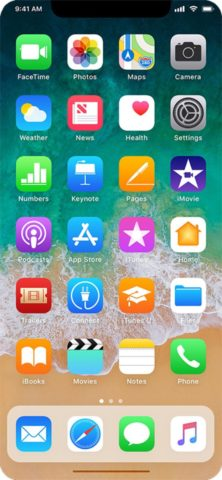 schermata home iPhone 8