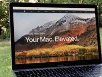 Lavori col Mac? Il punto sulla compatibilità dei software prima di installare High Sierra