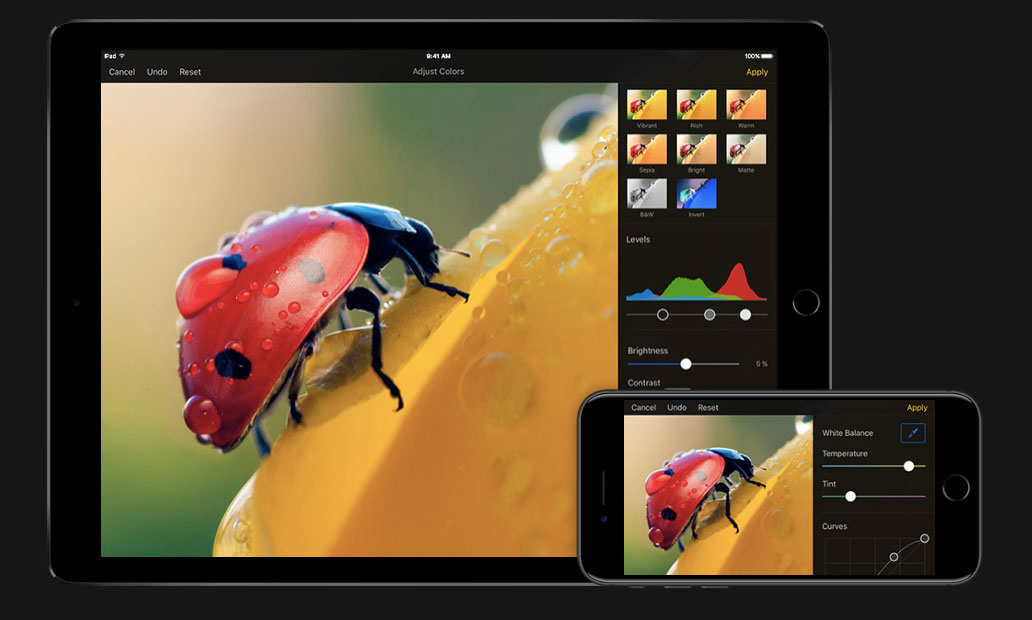 supporto HEIF in Pixelmator per iOS