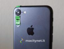 Recensione di Blips, kit di lenti che trasformano iPhone in un microscopio